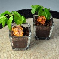 Mint Chocolate Pudding Pots