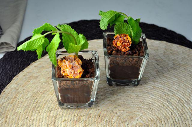 Mint Chocolate Pudding Pots